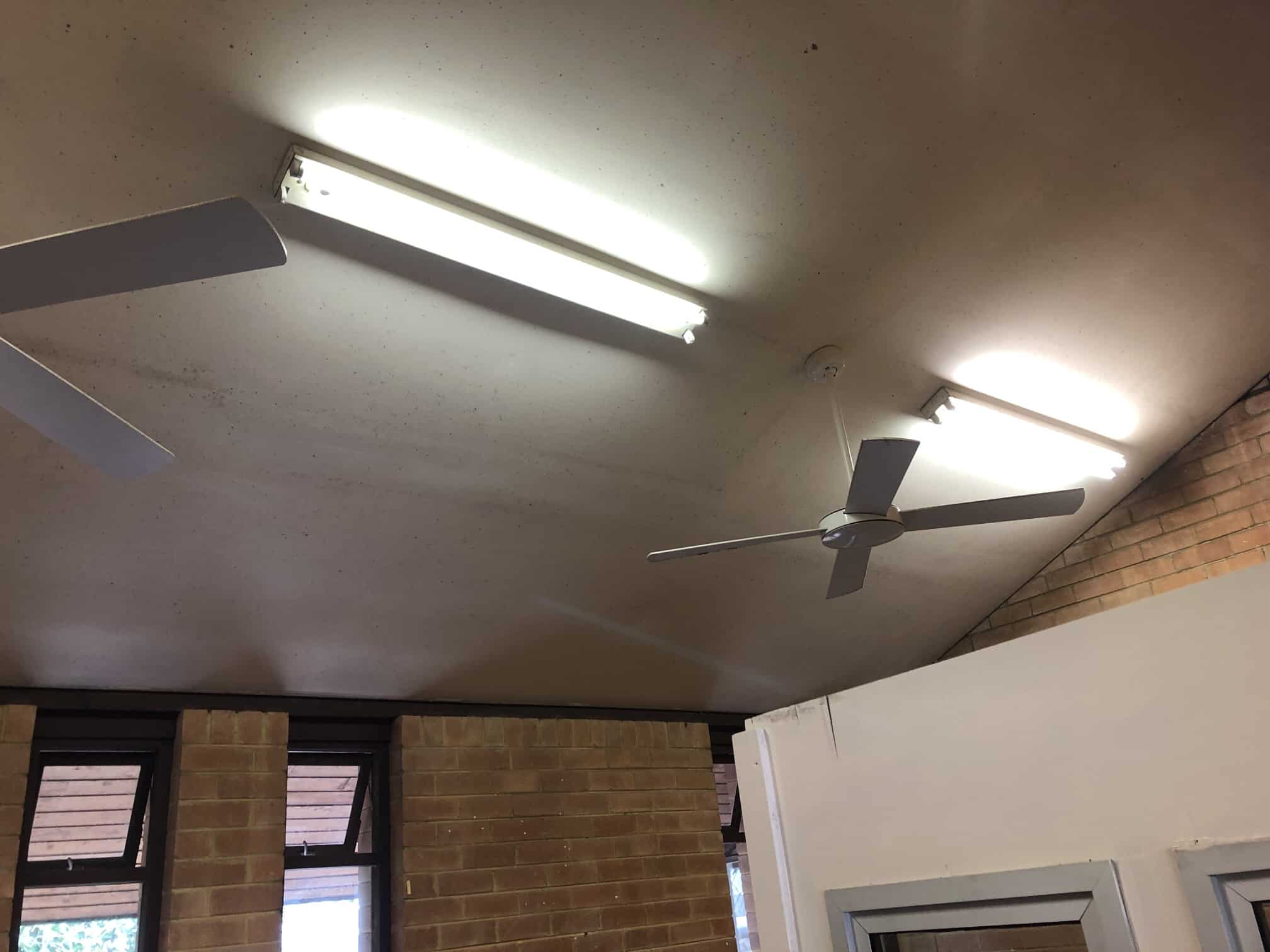 mouldy angled ceiling with fans