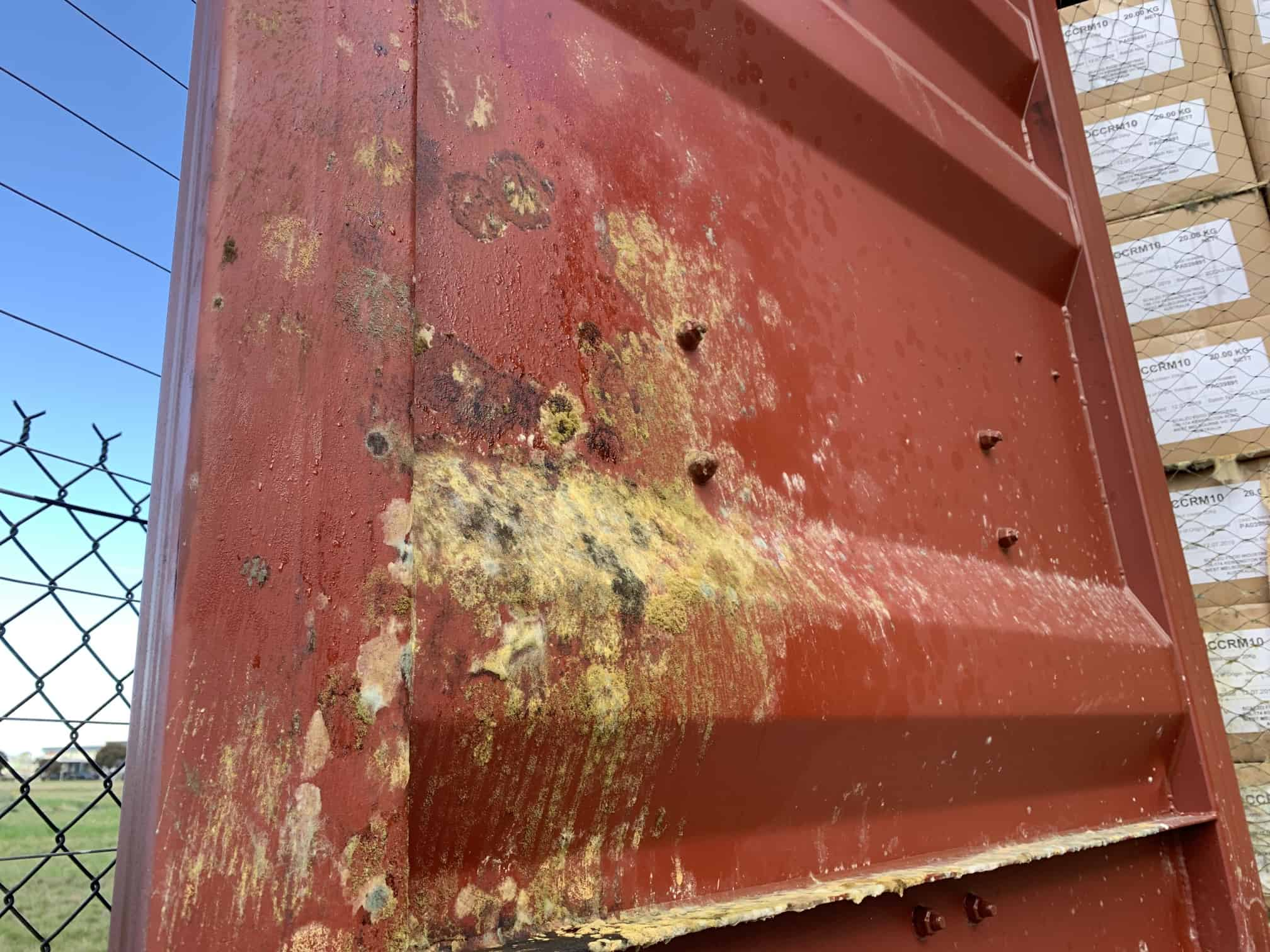 green mould on red metal door
