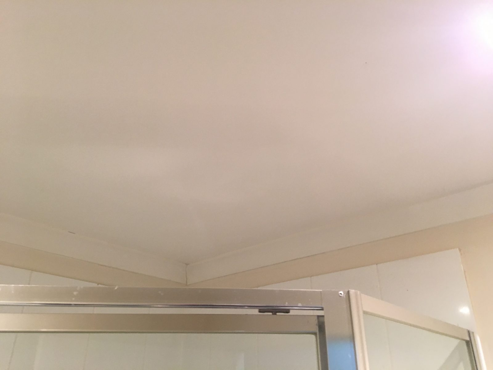Mould, Mold, Bathroom, Sydney