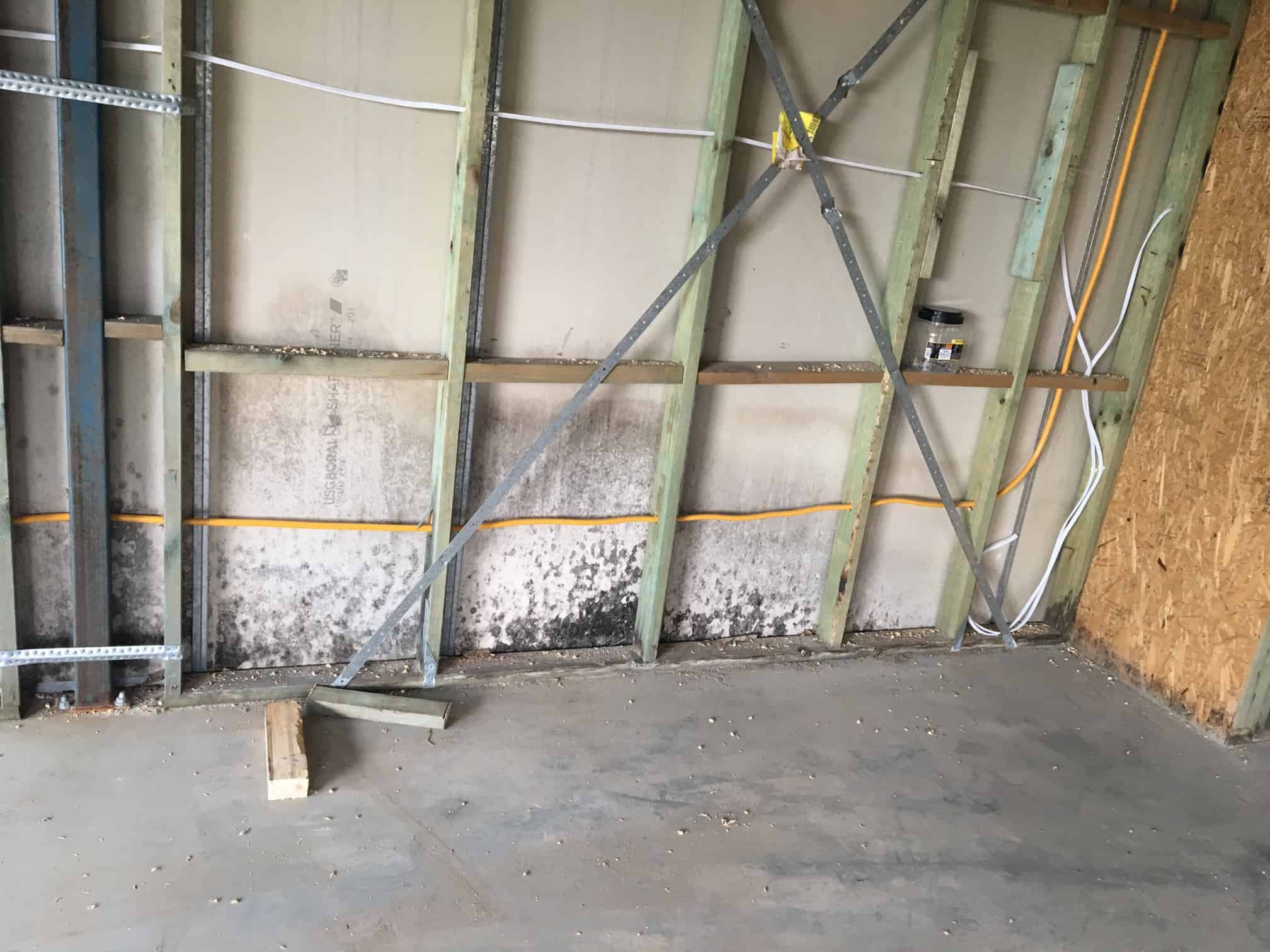 mould growth on garage walls