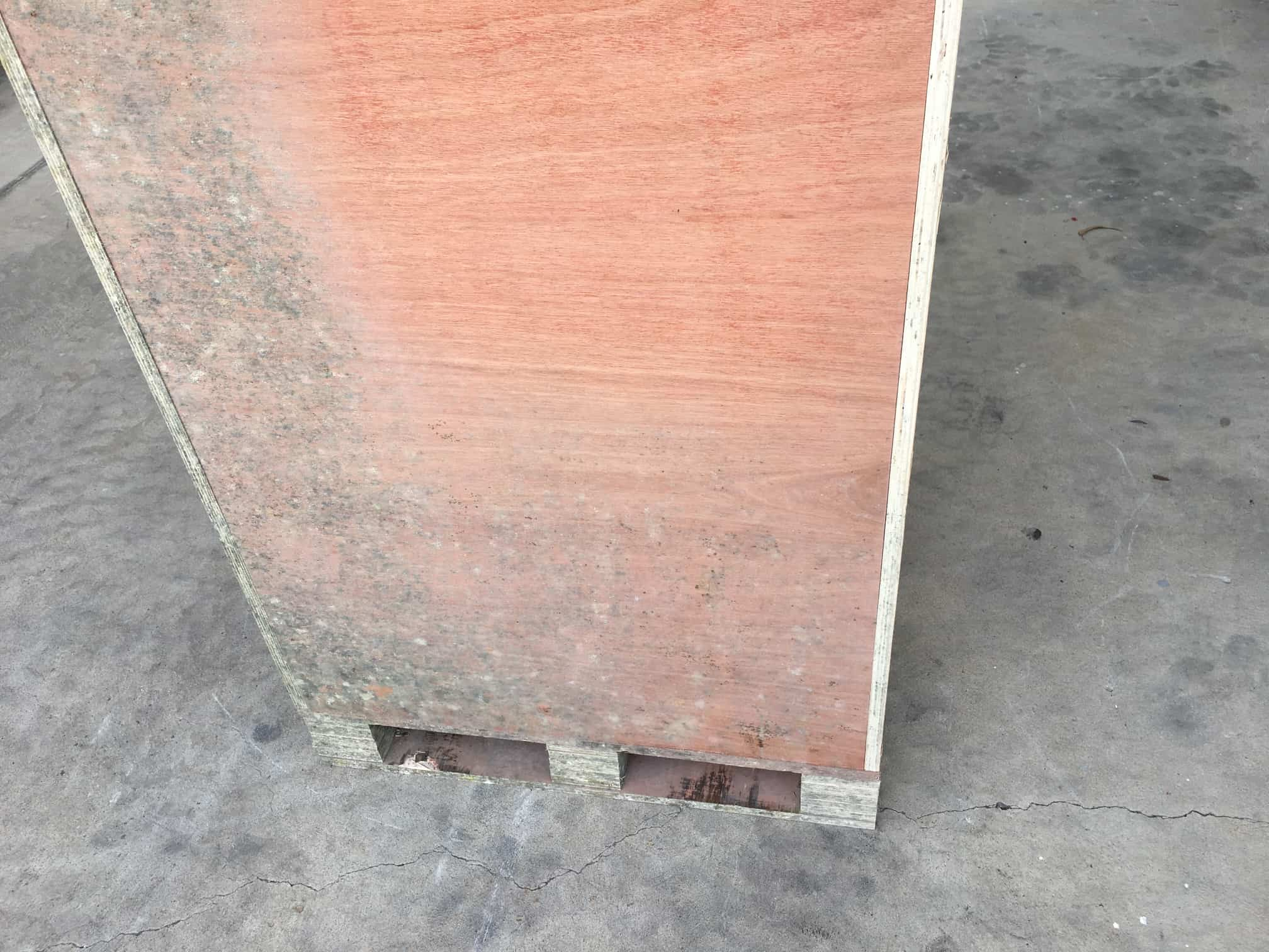 mould on wooden cabinet rear