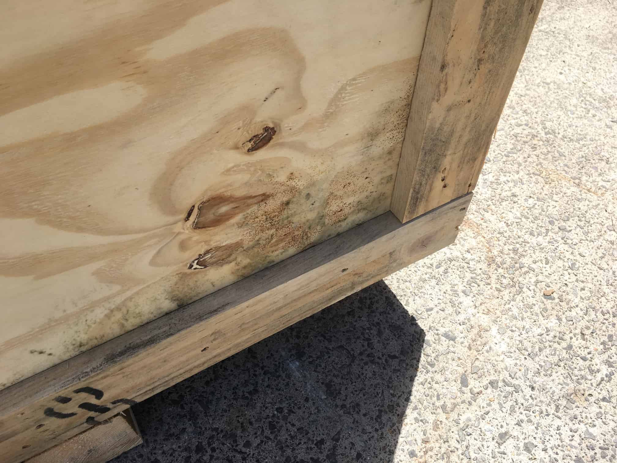 mould on wooden crate lower corner