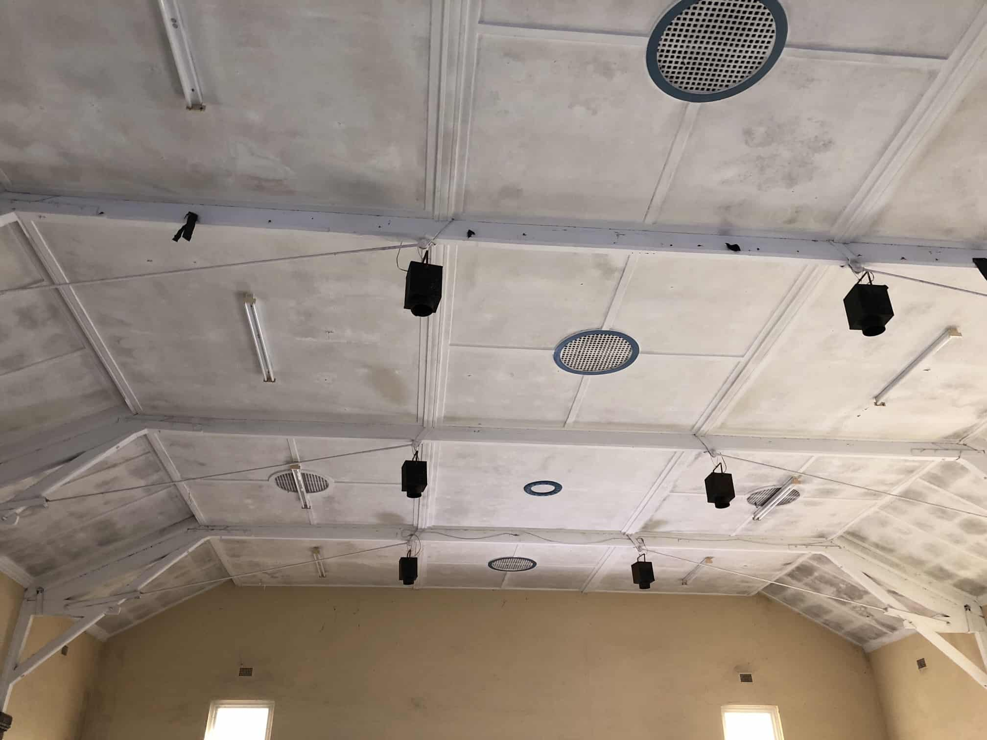 mould removed from ceiling