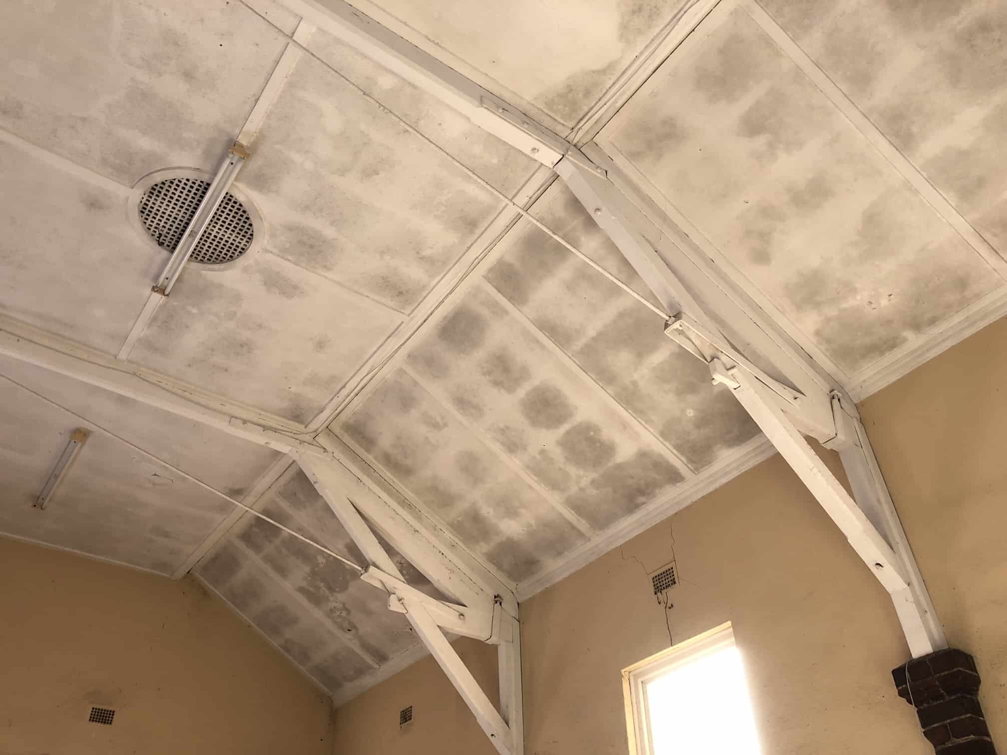 filthy black mould on ceiling