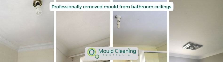 Professionally Remove Mould From Bathrooms