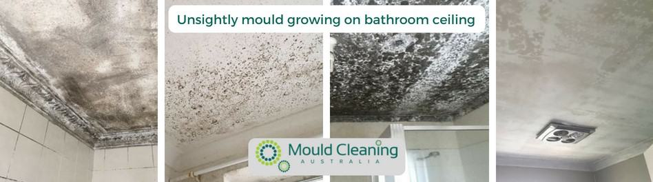 Unsightly Mould Growing On Bathroom Ceiling. Fast Mould Inspections