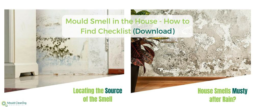 How to find mould in the house - checklist