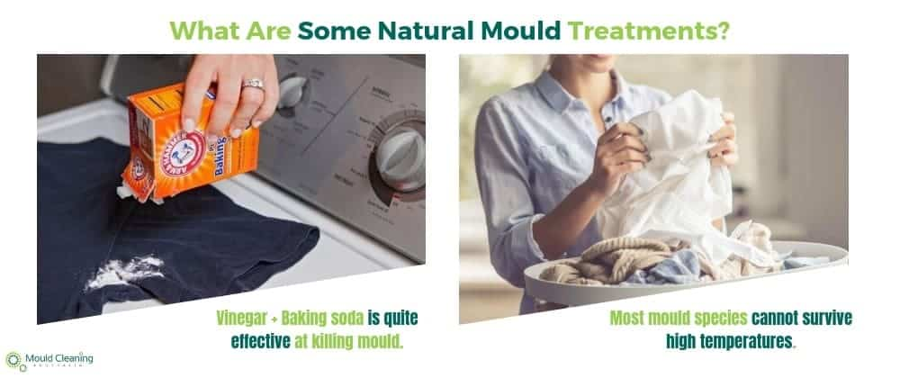 Natural Mould Treatments