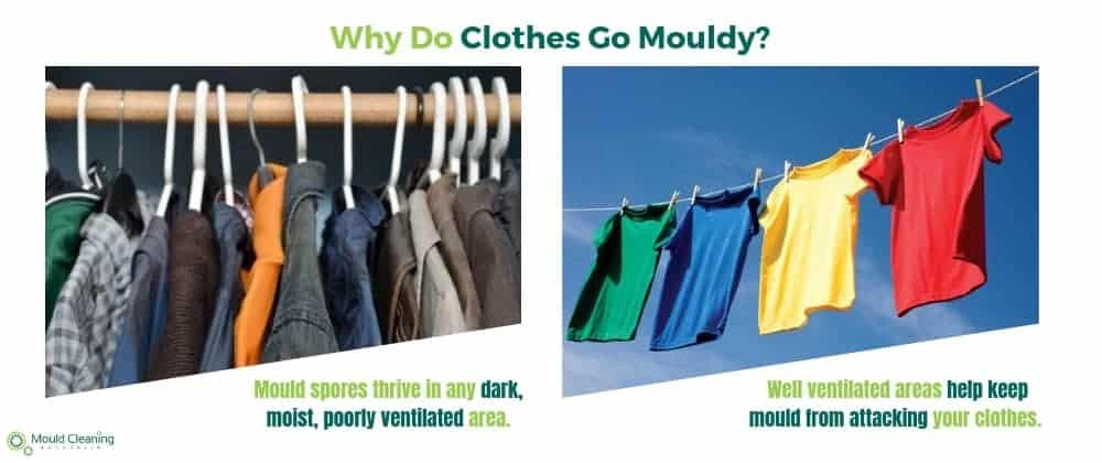 why do clothes go mouldy?