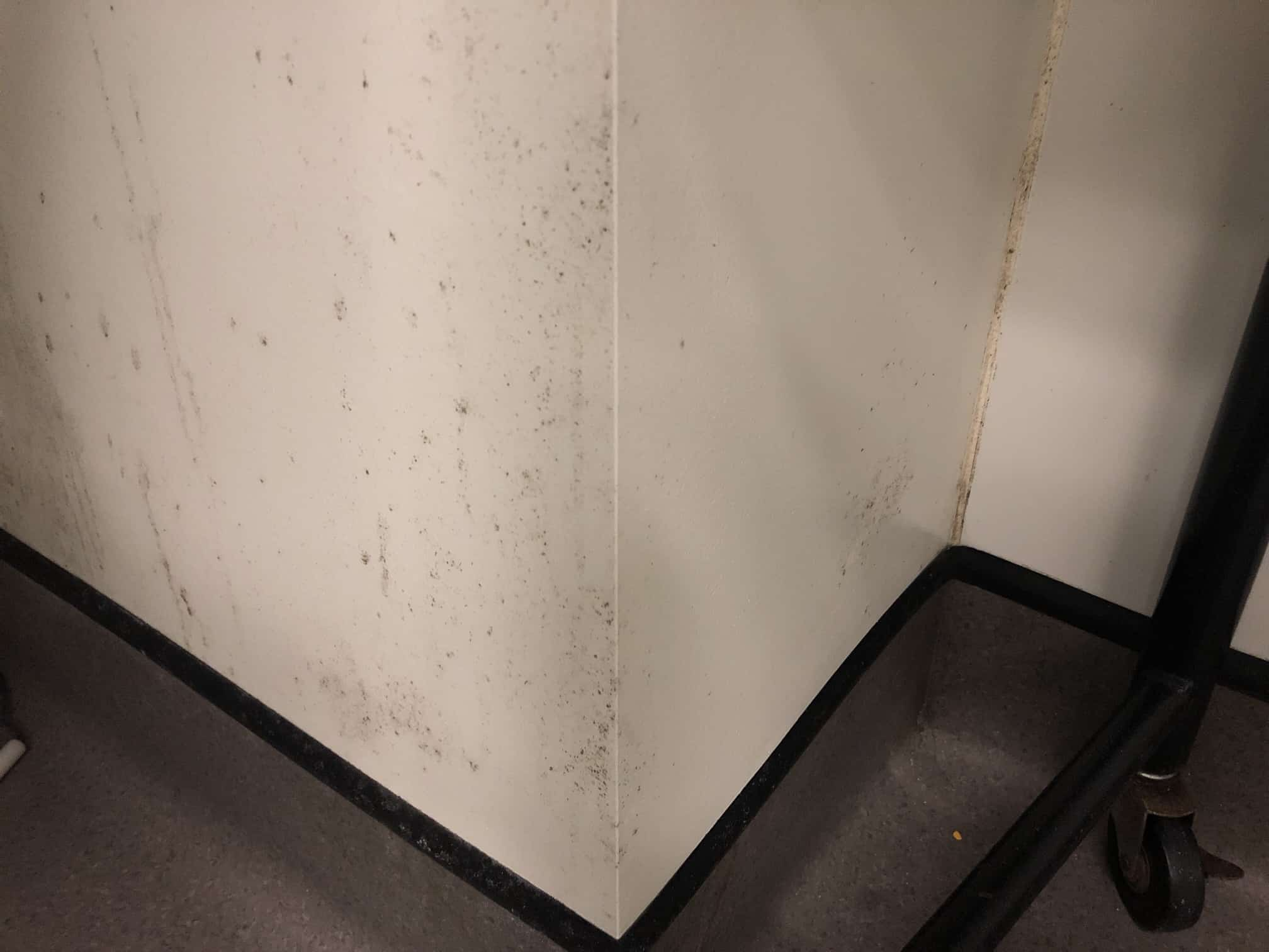 black stains on the wall