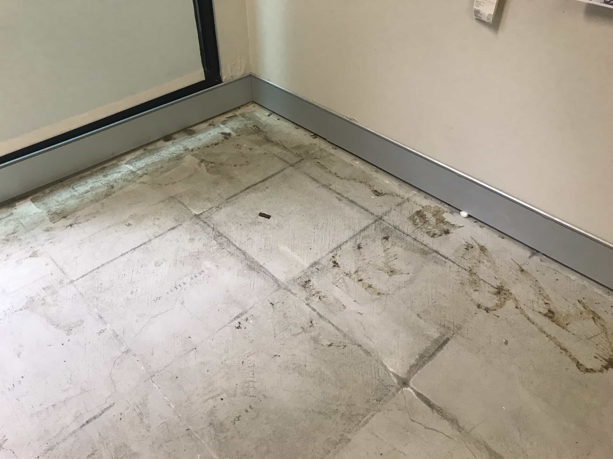 mould cleaned off of floor