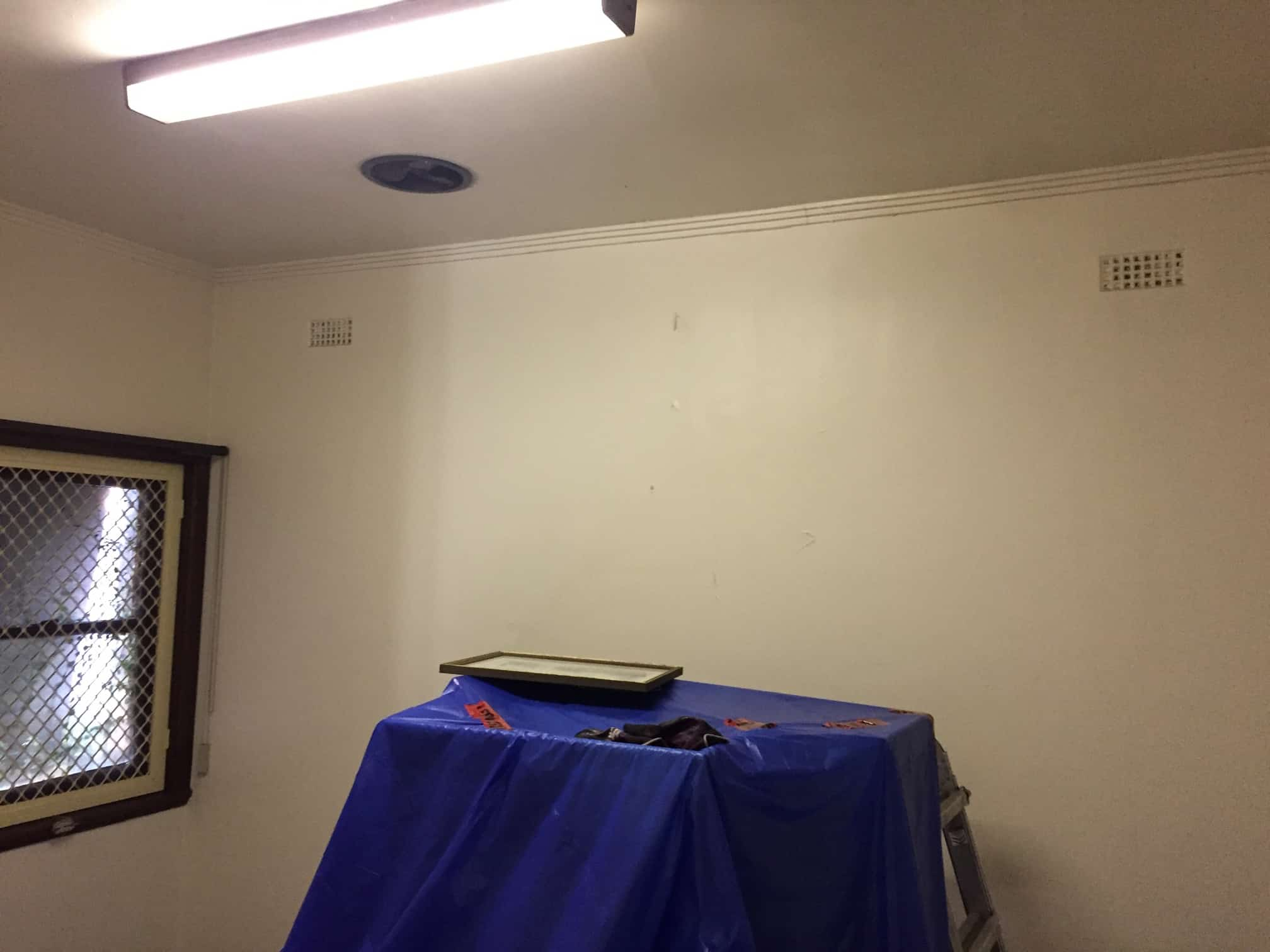 mould removal service on a wall