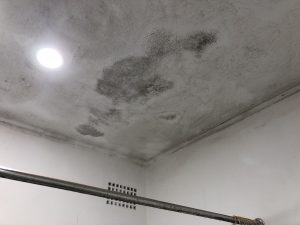 mould sutherland shire