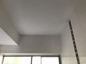mould removal eastern suburbs bondi