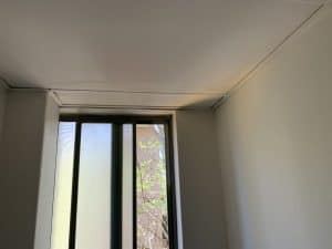mould cleaning inner west