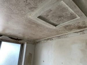Removal of mould in ceiling of a Melbourne property - Before