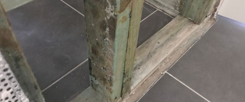 mould in construction